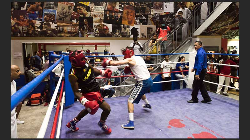 Boxing Clubs in Dubai/Sharjah